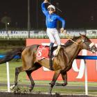 If you didn't bet on Monterosso (Mickael Barzalona up) to win the big race, you said Dubai to your money. On that sad note, we say Dubai to you until next week.