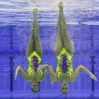 Until the Games begin in July, Italy's Giulia Lapi and Mariangela Perrupato will remain suspended in a vat of Alka-Seltzer at the Olympic Park Aquatic Centre in East London. You can't make this stuff up. Well, actually, you can and we often do...