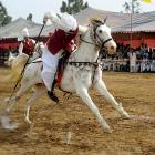 At full speed, an intrepid rider deftly spears and lifts a cocktail frank with a lance during a competition in Islamabad.