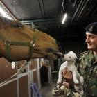 """We assume this is the entire troop. The info that came stapled to the photo says, """"Captain Owen Beynon Brown from the King's Troop Royal Horse Artillery holds up his dog Lord Percy, a resident at the Wellington Barracks, for Tango his horse to greet (or is it eat?) in London."""""""