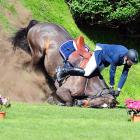 In horticultural news, an equine faceplant brightened the landscape in Hamburg with two of the potted variety.