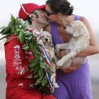 The Franchittis' pooches appear somewhat revolted by this unseemly public display of moo-moo after Mr. Franchitti won the Indianapolis 500.