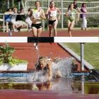 This week's intriguing sports mash-up: track and diving.