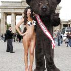 Just the bear essentials before the European Football Championship in Berlin.