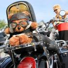 It looks like a clever promotion for the forthcoming major motion picture  Ted , but it's just a cuddly gathering of more than 200 owners of a particular brand motorcycle near the village of Netolice, Czech Republic.