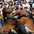 "Says here this is a traditional event in the Spanish village of Sabucedo where, on the first weekend of July, ""hundreds of wild horses are rounded up, trimmed and groomed"" before, we assume, they audition for parts in the hit vampire series  True Blood ."