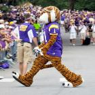 """Mascots serve to inspire or """"rile up"""" the crowd while encased in suffocatingly hot costumes. Here, the one from LSU appears to be wandering disoriented before a game against the North Texas Mean Green in Baton Rouge, where daytime temperatures routinely hit the 90s with withering humidity."""
