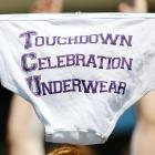 Welcome to another college football addition of  Did You See That? , the gallery that's unafraid to air its briefs. This fine undergarment was on display much of the day as the Horned Frogs rang up three TDs in a 27-7 win over Virginia in Fort Worth, TX.