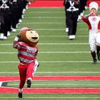 Ohio State's wily mascot is often angrily pursued by the school's marching band which, according to our campus spies, frequently catches him pouring beer in the tubas and stuffing spuds in the trumpets.