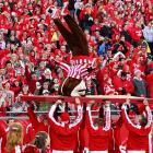 According to admittedly sketchy reports out of Madison, a horrified crowd looked on as EMT's carried Wisconsin's mascot from Camp Randall Stadium after an overzealous carpenter nailed a tabletop to his noggin during the game against Michigan State.