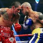 Miguel Cotto at Madison Square Garden