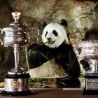 Animal collective: The winner of the Daphne Akhurst Memorial Cup (women's singles trophy) and the Norman Brookes Challenge Cup (mens singles trophy) picks his teeth in a moment of quiet satisfaction at Adelaide Zoo.