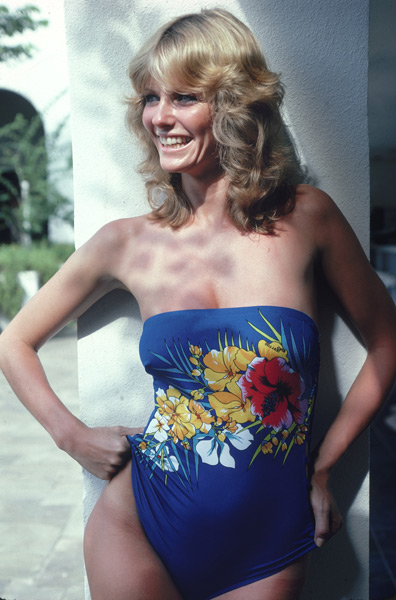 Cheryl tiegs nipples — pic 9