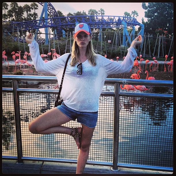 @annev_official: Evening work out with the flamingos