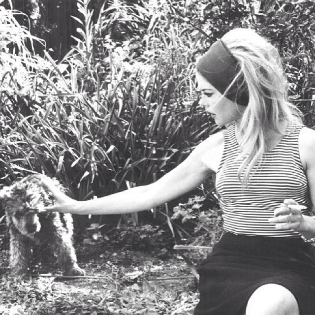 @yasminbrunet1: Bom dia com minha musa diva iluminada Brigitte Bardot