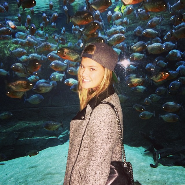 @ninaagdal: Red piranhas