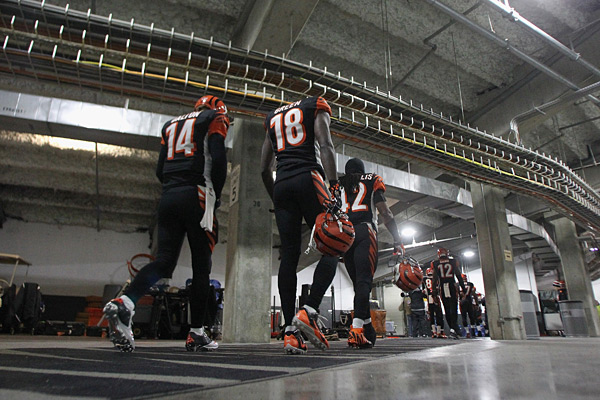 Cincinnati Bengals :: Getty Images