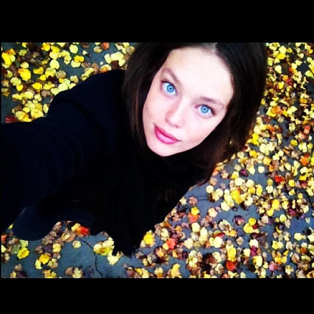 @emilydidonato1: Good morning NY! Love the colors of fall.