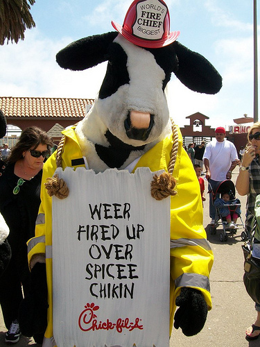 2. Cow (Chick-Fil-A Bowl): The drunk uncle of college bowl mascots.                                                                  (photo credit: Clotee Pridgen Allochuku via photopin cc)
