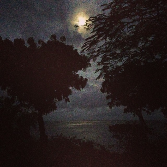 11/19 @ 4:57 am: Oh hey moon. #upbeforethesun