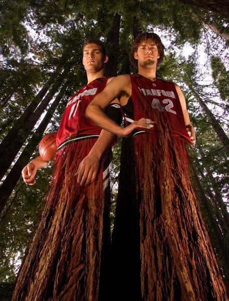 Brook and Robin Lopez morph into a tree. (John Burgess/SI)