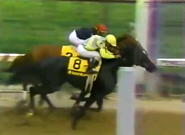 Sunday Silence barely edges Easy Goer at the 1989 Preakness Stakes.  (YouTube)