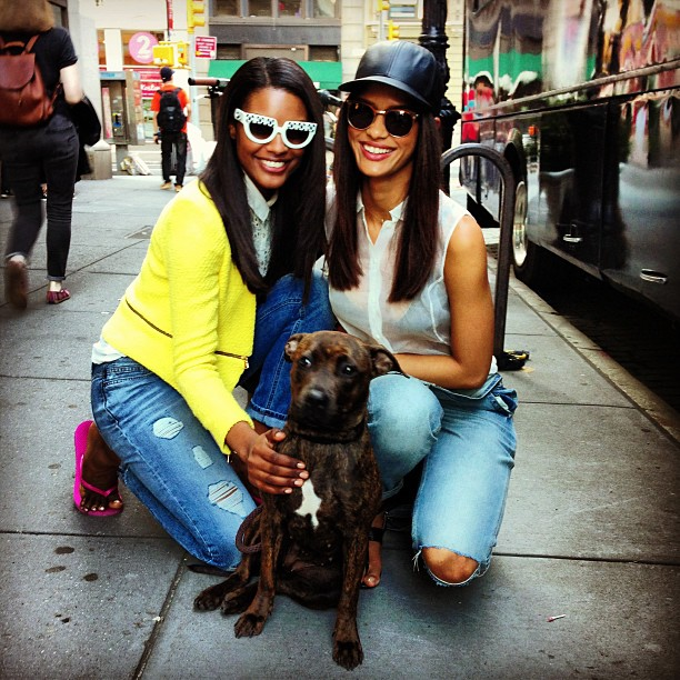 It's a wrap! #shoot #streets #of #nyc #models #life #work #amazing #day#girl #beautiful #happy #fashion #photographer #love #instamood#instadaily #fun #dog #puppy #daisy #helmutlang @topshop_#overall@owennyc_#leatherhat @rag_bone #sunglasses #theory