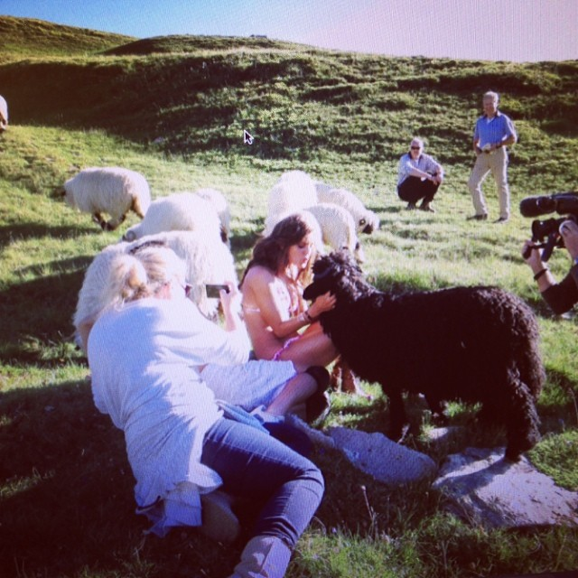 @emilydidonato1: Looking back and laughing at this picture of my crazy weird love connection with the only black sheep in the herd in Switzerland on my @si_swimsuit shoot@mj_day @ja_neyney #truelove #spiritanimal #zermatt