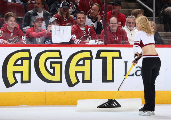 Phoenix Coyotes :: Getty Images