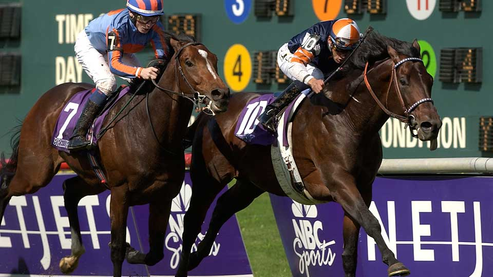 With jockey David Flores up, Singletary (10) won the 2004 Breeders' Cup Mile at odds of 16-1.