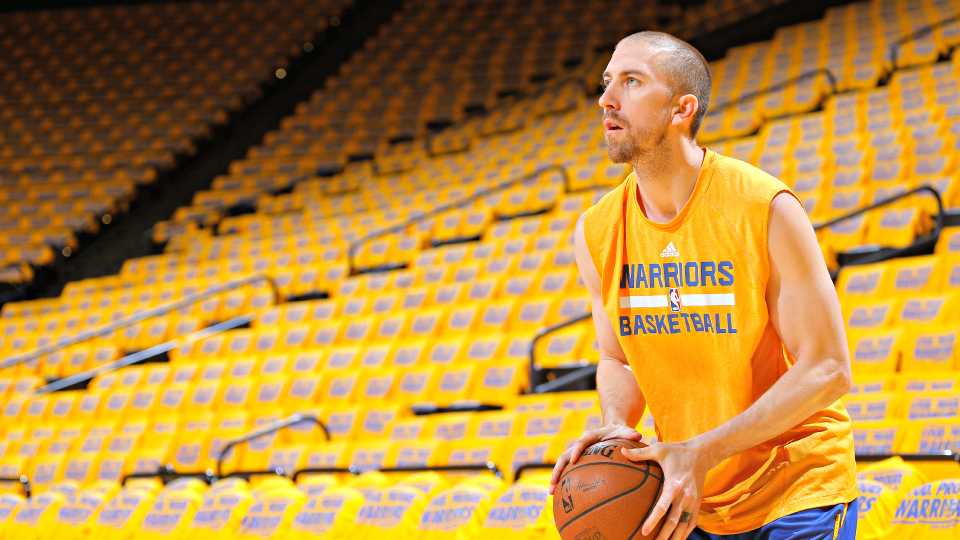 Veteran guard Steve Blake averaged nearly seven points per game in 2013-14 during stints with the Lakers and Warriors.