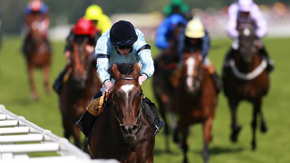 Ridden by jockey Ryan Moore, Telescope (foreground, black cap) won the Hardwicke Stakes at Royal Ascot on June 21.