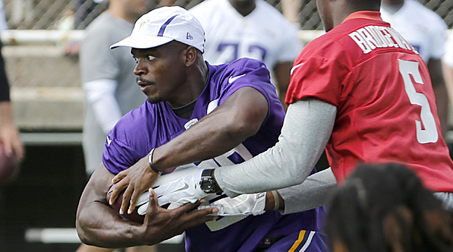 Adrian Peterson returns to the field as Vikings open up 2015 training camp.