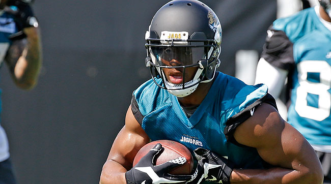 Allen Robinson (Photo by John Raoux/AP)