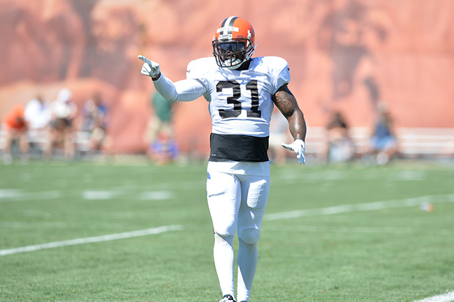 Donte Whitner Cleveland Browns