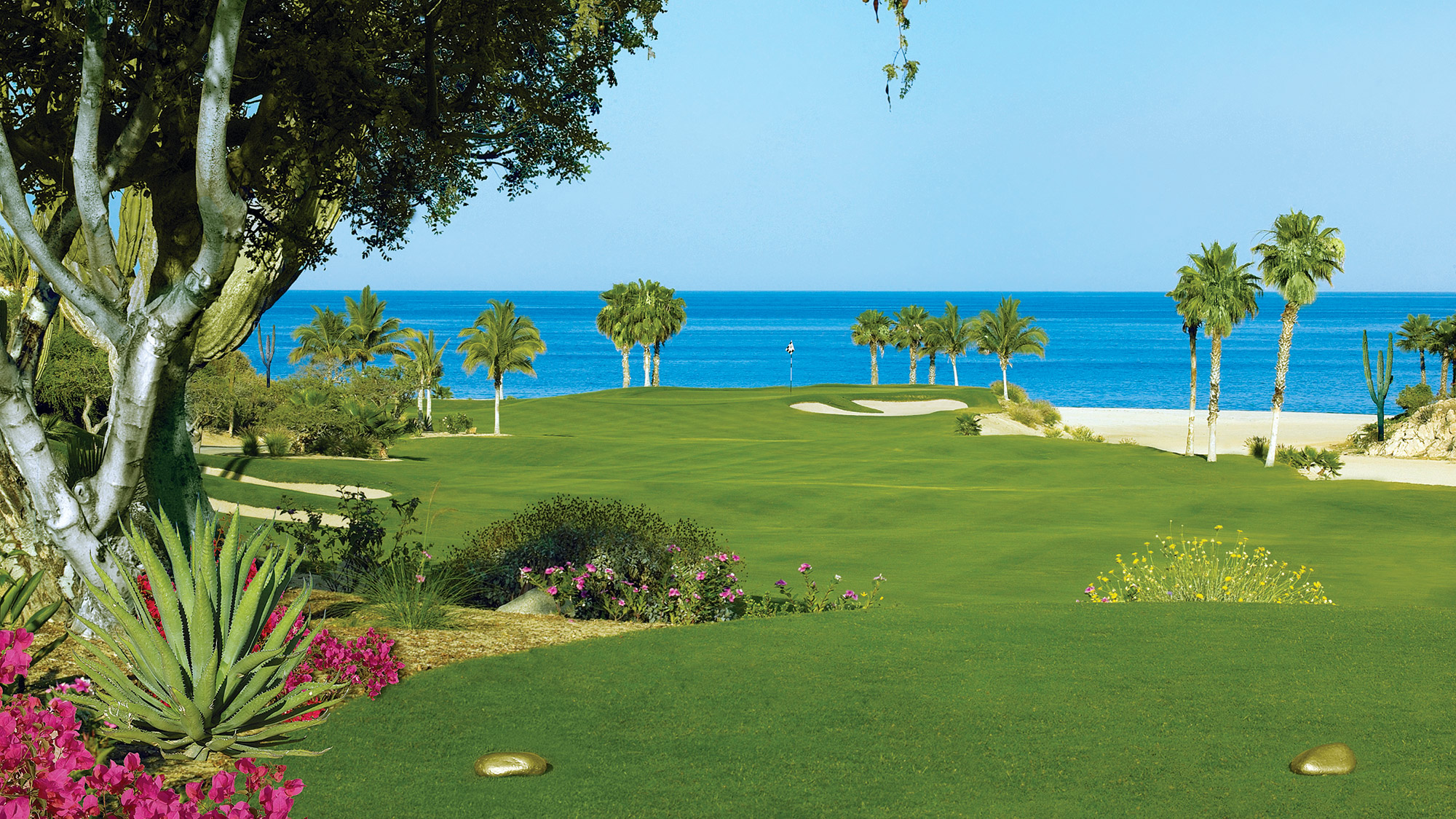 A view of the green on One&Only Palmilla's Jack Nicklaus-designed Ocean course.