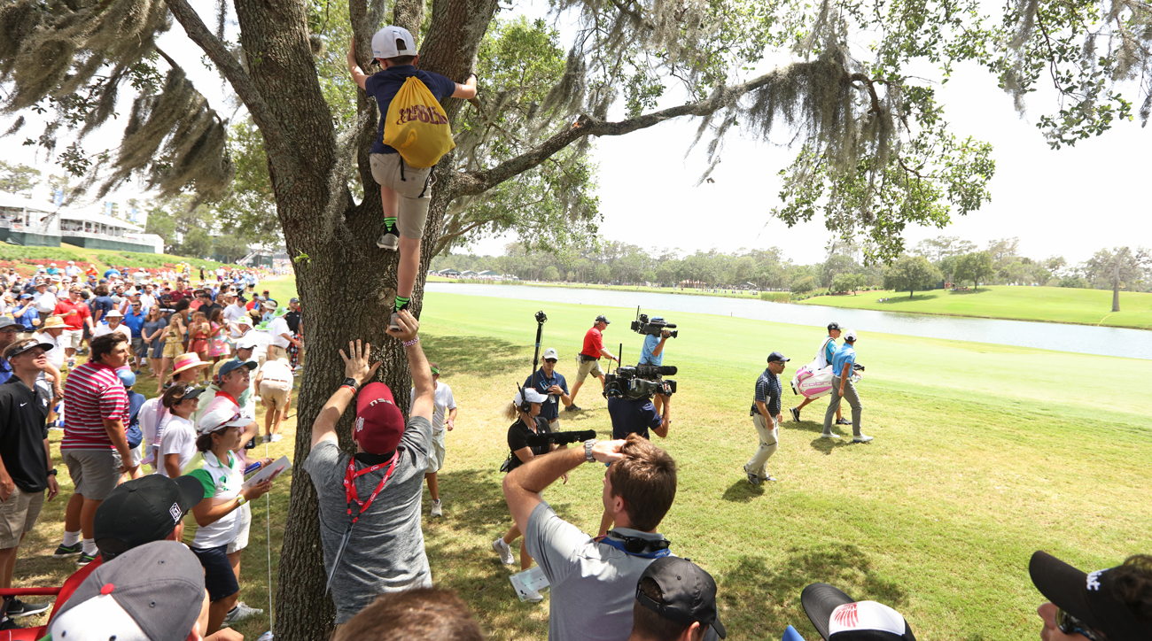 Nothing was stopping this young fan from scaling the tree to claim Fowler's errant tee ball.
