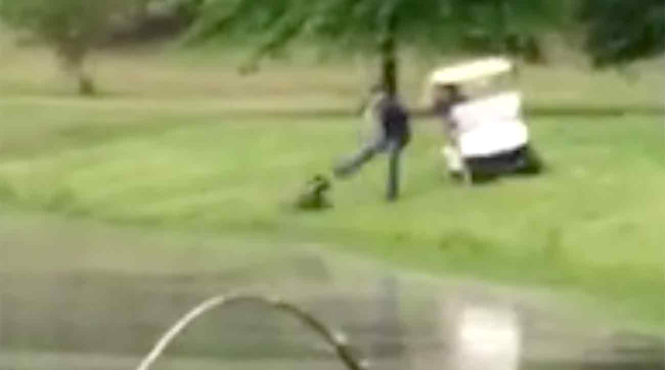 One of the two suspects is shown kicking the goose.