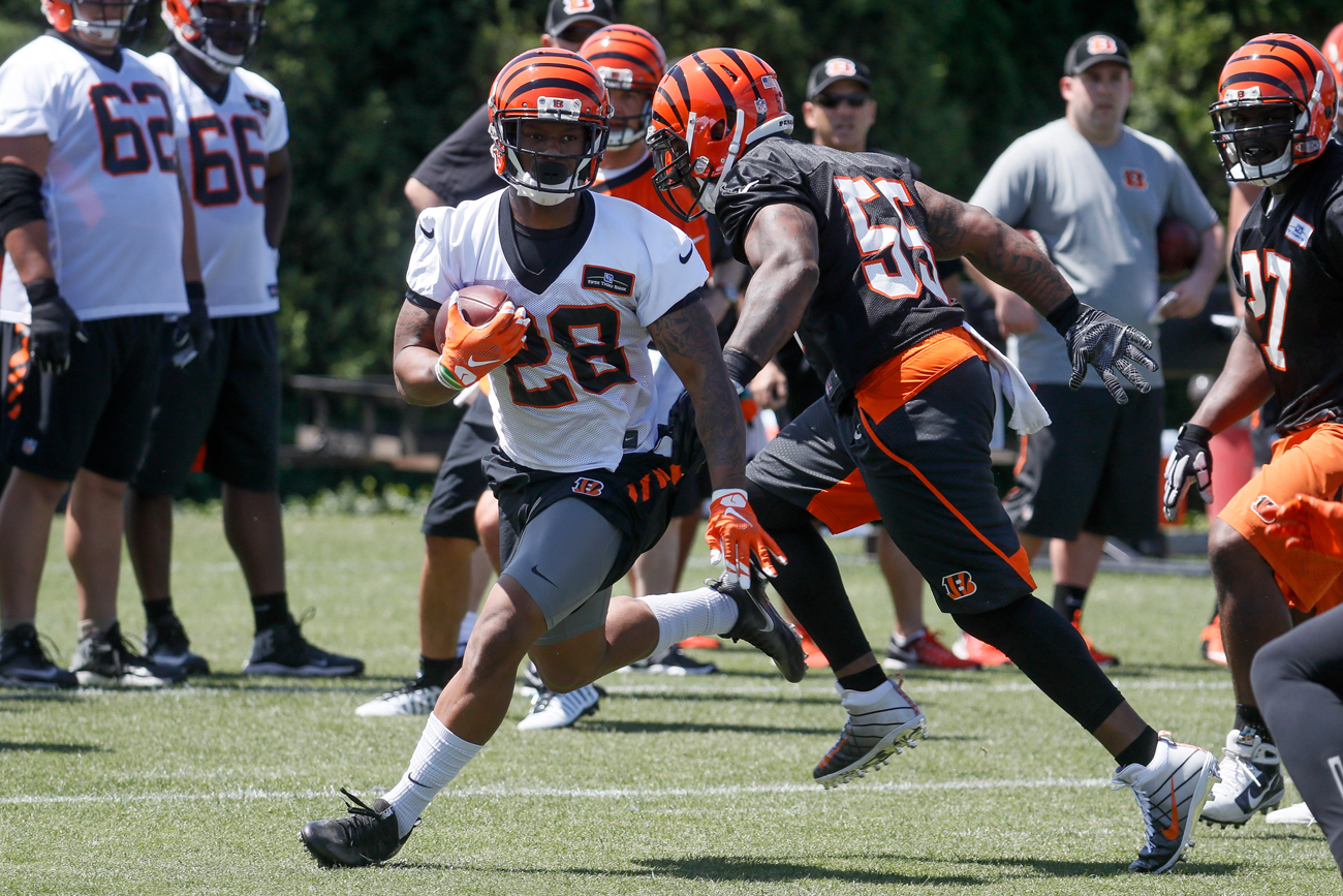 Bengals rookie running back Joe Mixon.
