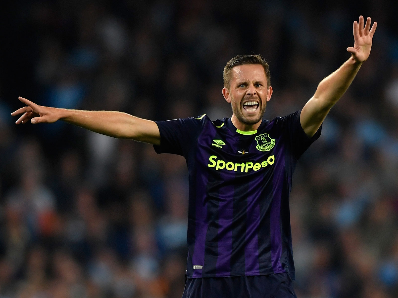 Gylfi Sigurdsson left Swansea City for Everton