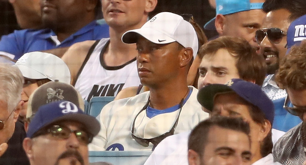 Tiger takes in the action during Game 2 of the 2017 World Series between the Houston Astros and the Los Angeles Dodgers.