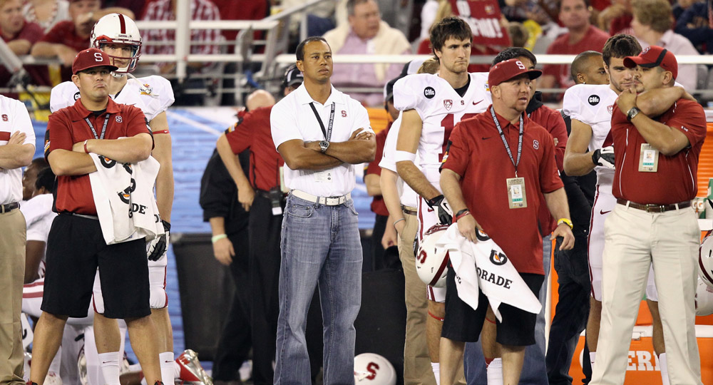 Tiger stands on the Stanford Cardinal sideline as he watches the team take on the Oklahoma State Cowboys during the Tostitos Fiesta Bowl in 2012.