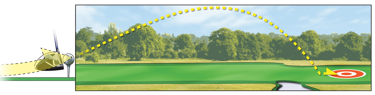 The higher tee and forward ball position will produce a higher launch angle and more carry.