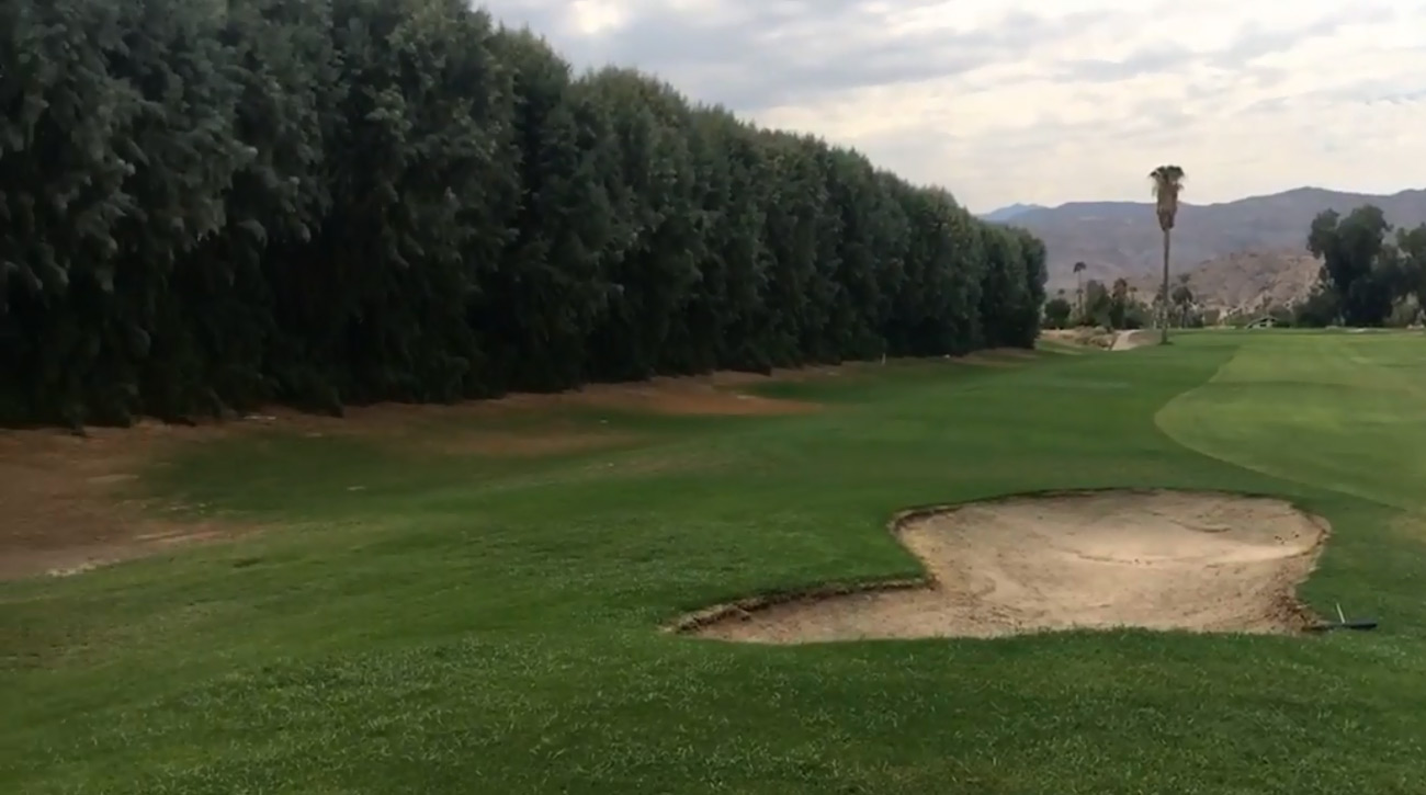 A view of some of the tamarisk trees that line Tahquitz Creek Golf Course in Palm Springs, Calif.
