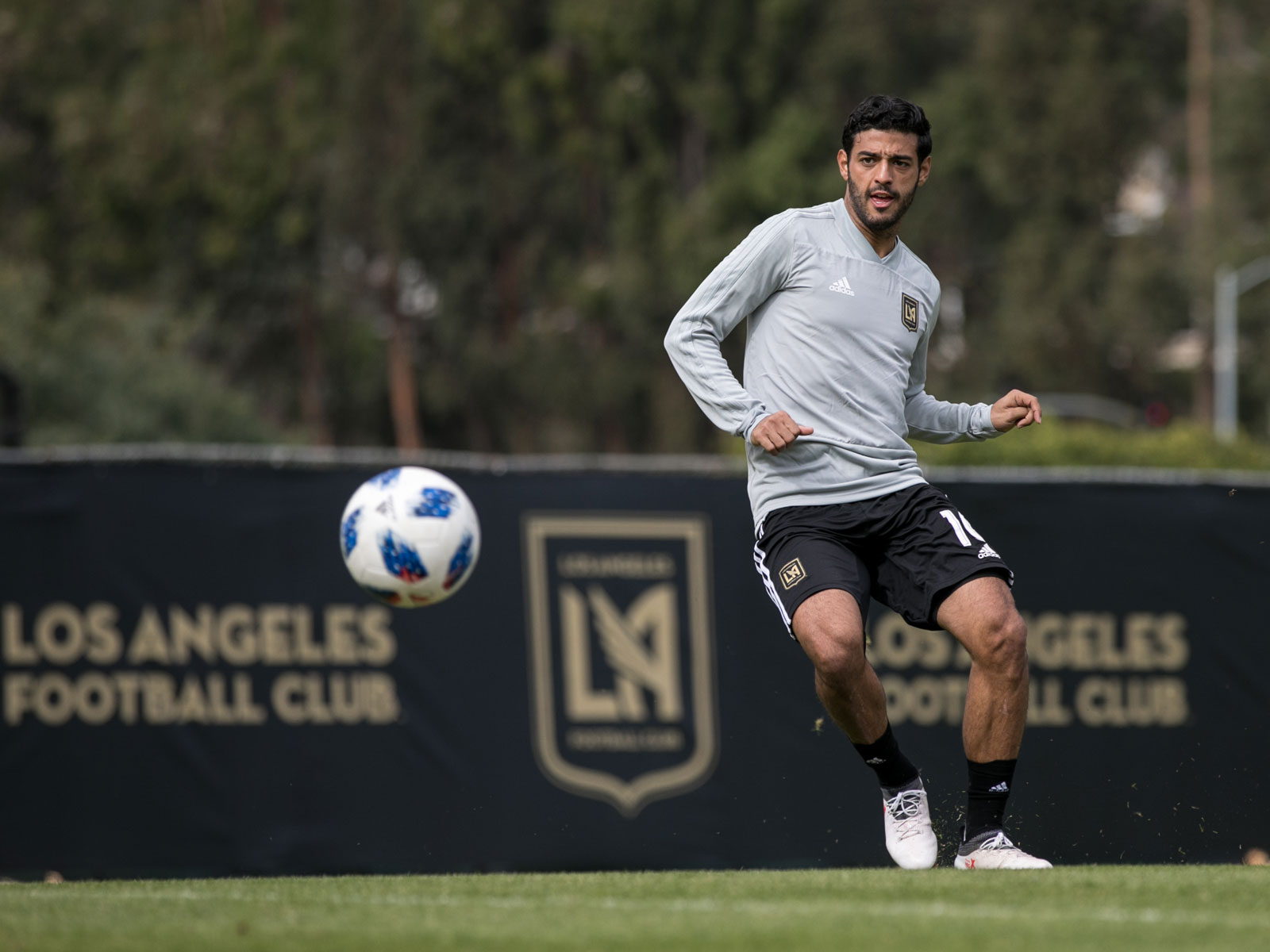Carlos Vela is LAFC's marquee signing in its expansion season