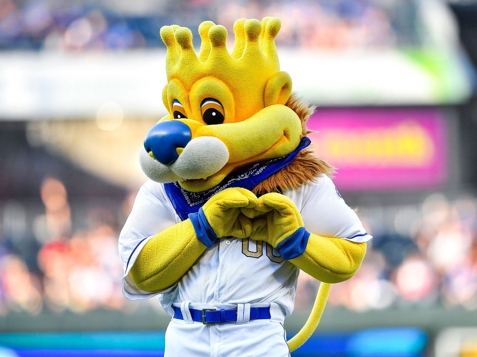 Sluggerrr is the Kansas City Royals mascot
