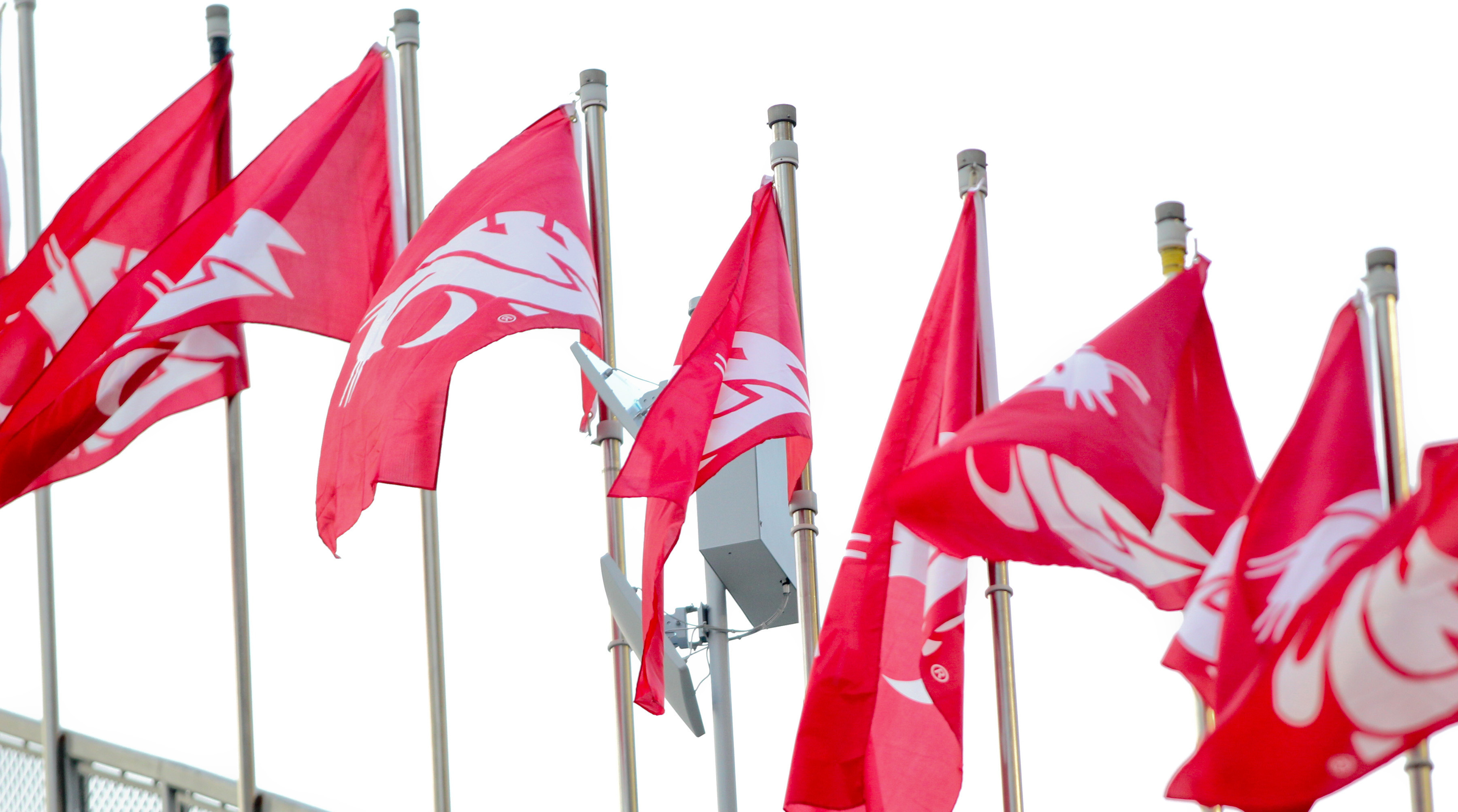 wazzu-flag-explainer
