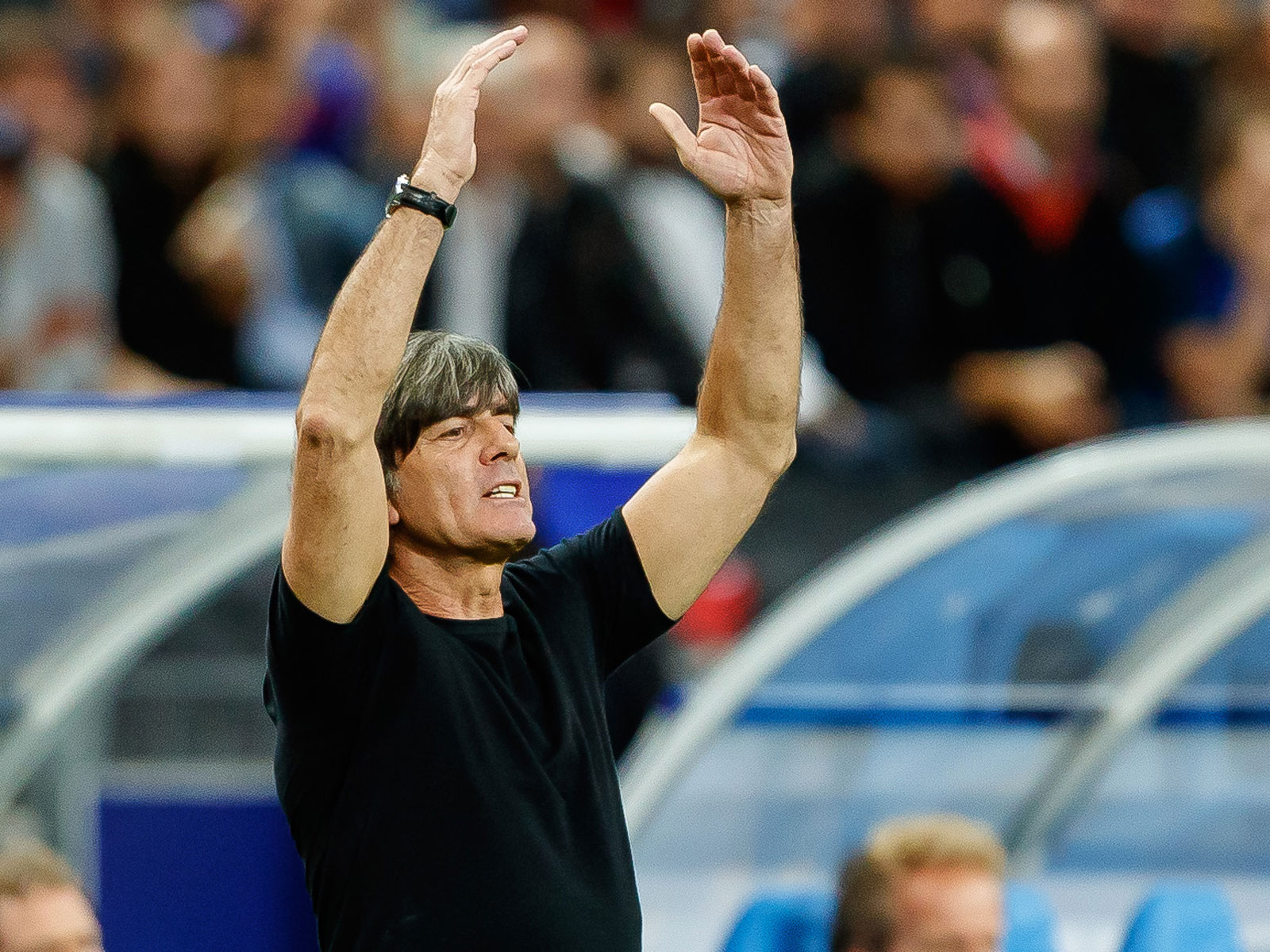 Joachim Low stayed on as Germany manager