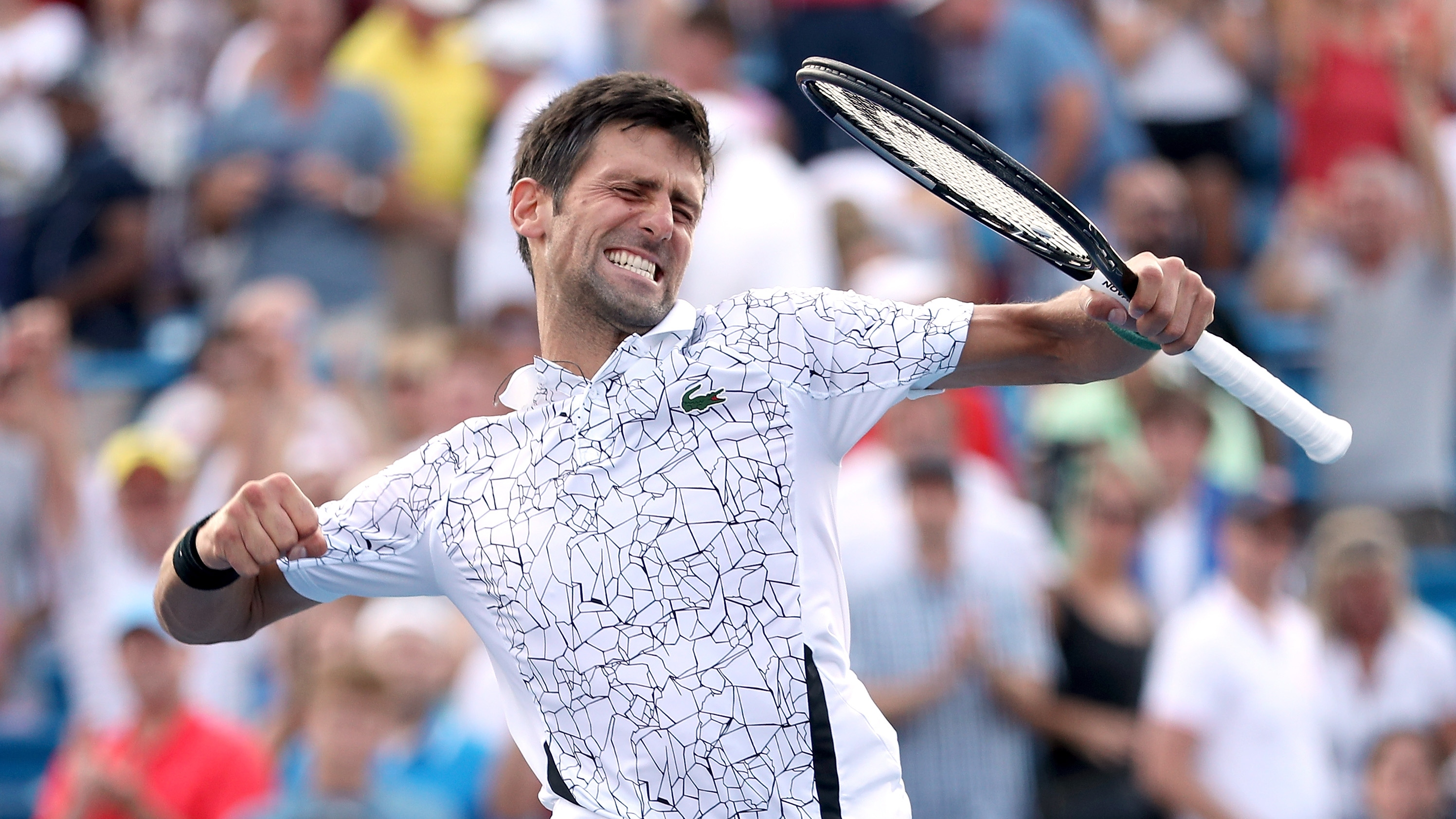 Novak djokovic 2019 tennis predictions