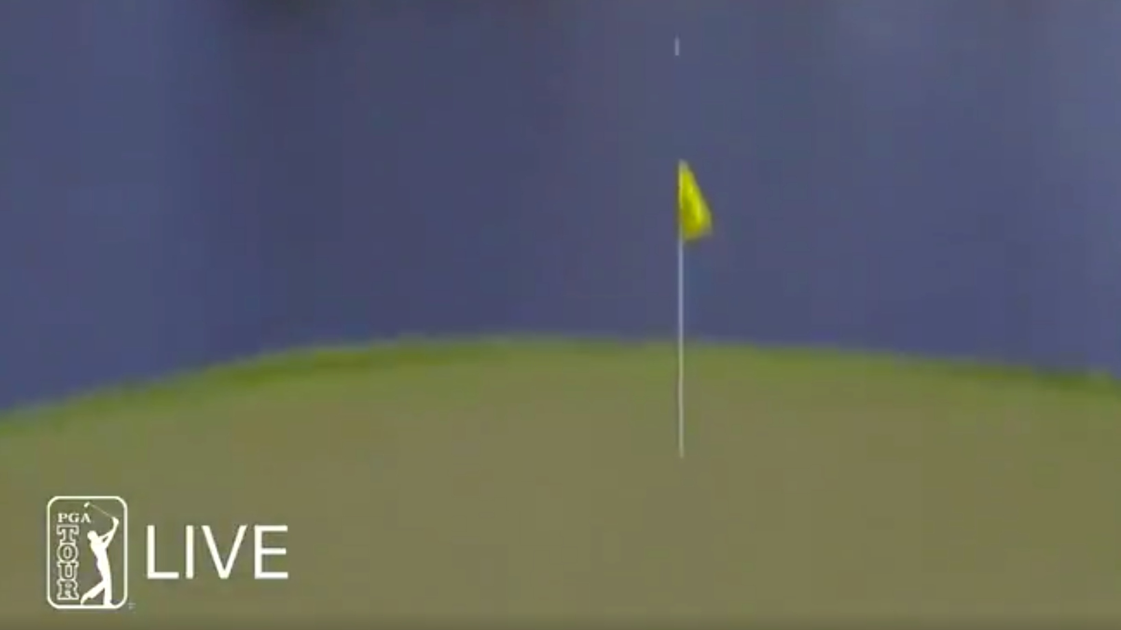 Ryan Moore ace 17 tpc sawgrass players championship